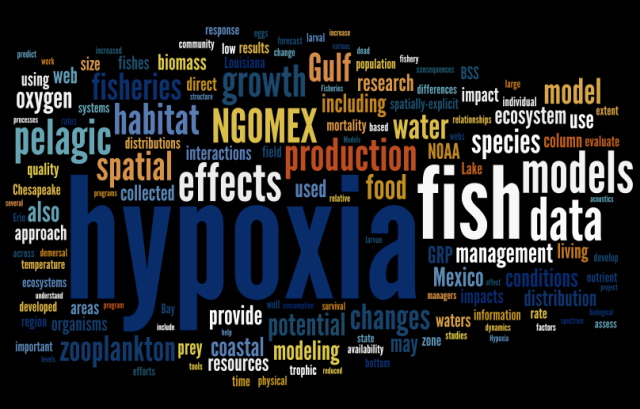 wordle.net based on the NGOMEX 2009 proposal