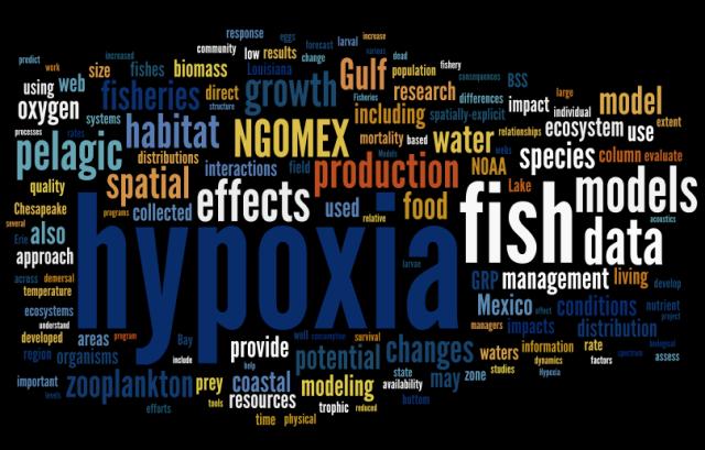 wordle.net based on the NGOMEX 2009 proposal