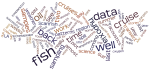 wordle.net word cloud from RSS